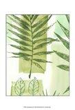 Leaf Impressions III
