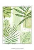 Leaf Impressions IV