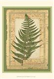 Woodland Scrapbook II