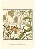 Small Botanical Quadrant III (P)