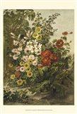 Small Flower Garden (P)