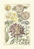 Floral Bounty I