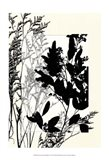 Sm Translucent Wildflowers X