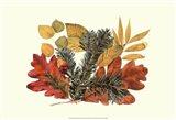 Sm Wh Oak,Balsam Fir&Yw Birch