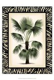 Small Palm in Zebra Border II