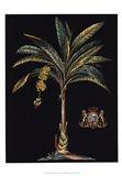Palm & Crest on Black I