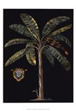 Palm & Crest on Black II