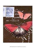 Le Papillon Script II