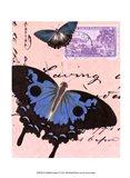 Le Papillon Script V