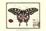 Butterfly Prose V