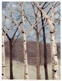 Blue Birches I