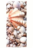 Shell Menagerie I