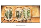 Spice Jars I