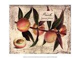 Fresco Fruit IX