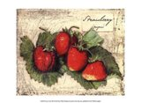 Fresco Fruit XII