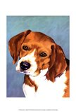 Dog Portrait-Beagle