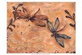 Fluttering Dragonflies
