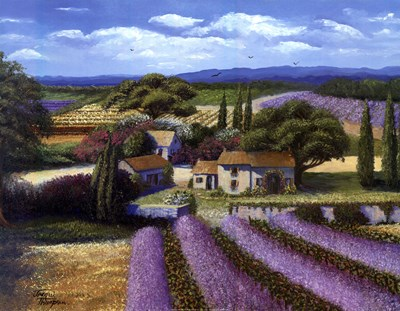 Lavender Fields Poster by Jackie Thompson for $25.00 CAD