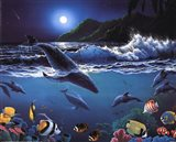 Moonlit Sealife