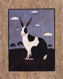 Folk Bunny