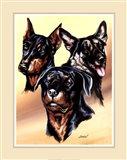 Dog Collage I