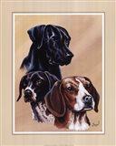 Dog Collage II