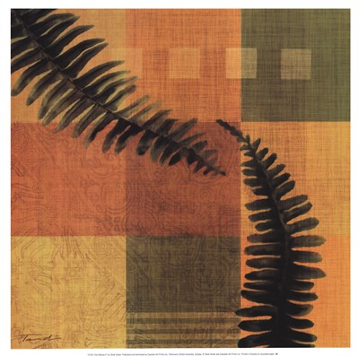 Fern Blocks II Poster by Tandi Venter for $21.25 CAD