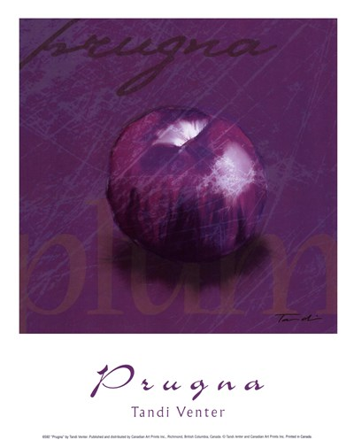 Prugna Poster by Tandi Venter for $10.00 CAD