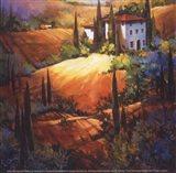 Morning Light Tuscany