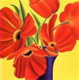 Sunny Tulips