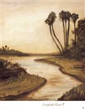Everglade River II