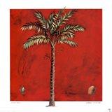 Maya Palm