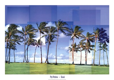 Kauai Poster by Pep Ventosa for $52.50 CAD