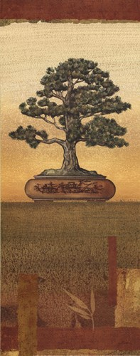 Bonsai I - Mini Poster by Charlene Audrey for $16.25 CAD