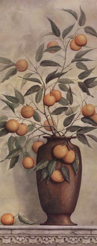 Apricotier Poster by Daphne Brissonnet for $16.25 CAD
