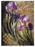 Iris Romance