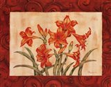 Linen Scroll Amaryllis