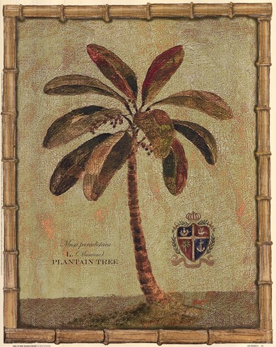 Caribbean Palm IV With Bamboo Border Poster by Betty Whiteaker for $15.00 CAD