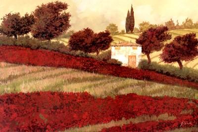 Apapaveri Toscana I Poster by Guido Borelli for $37.50 CAD