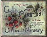 Cottage Garden I