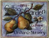 Cottage Garden II