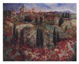 Fleur Rouge En Provence