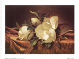 Magnolia On Gold Velvet Cloth