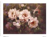 Full Blossom II