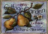 Cottage Garden II