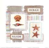 Ocean Original II
