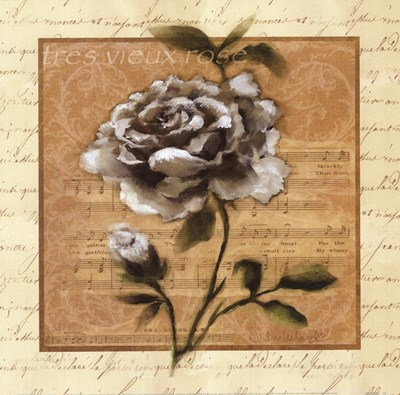 White Rose Square Poster by Julie Ueland for $21.25 CAD
