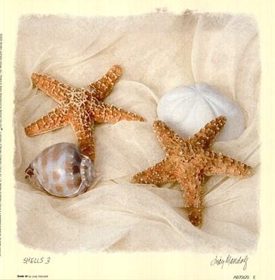Shells III Poster by Judy Mandolf for $12.50 CAD
