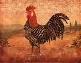 Florentine Rooster I