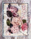 Love Letter Roses